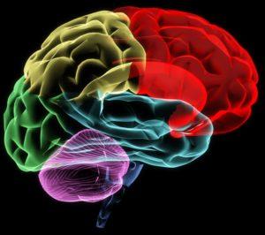 uticaj alkohola na mozak